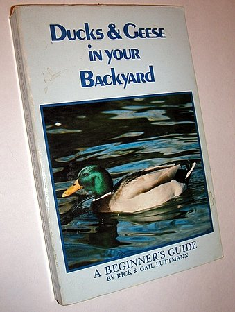 Ducks & Geese in Your Backyard Beginner's Guide to Raising Poultry