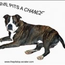 "Pitbull T-shirt  ""give pits a chance"""