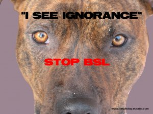 "Pitbull T-Shirt  ""see ignorance"""