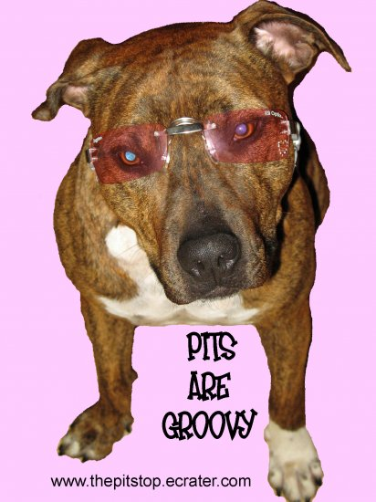 "Pitbull T-Shirt  ""pits are groovy"""