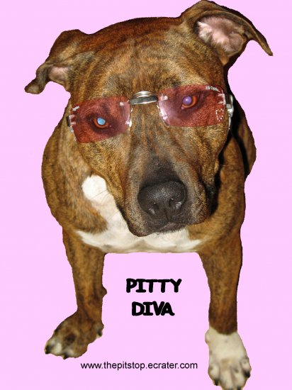 "Pitbull T-Shirt ""pitty diva"""
