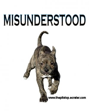 "pitbull t-shirt  ""MISUNDERSTOOD"""