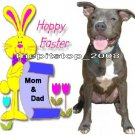 "Brand New Pitbull T-Shirt  ""Happy Easter With Bunny"""