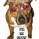 "Brand New Pitbull T-Shirt  ""Groovy"""