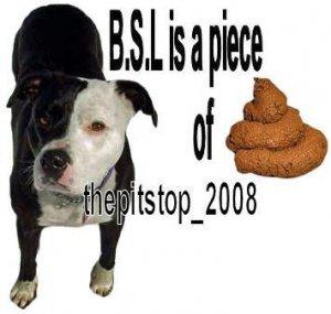"""Brand New Pitbull T-Shirt  """"B.S.L is a piece"""""""