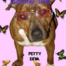 "pitbull t-shirt  ""Pitty Diva """