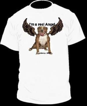 "Brand New Pitbull T-Shirt  ""I'm a real Angel"""