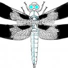 Brand New Dragonfly T-Shirt