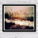 Beach Weeds Sunset Wall Decor, Painting Effect Print, Home Decor, Sunset Beach Digital