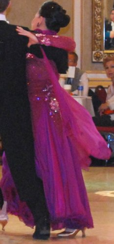 Raspberry Ballroom Dress