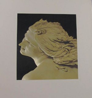 The World of Bernini 1598 - 1680 Time LIfe Library of Arts Robert Wallace 1973 Hardcover Slipcase