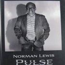 Norman Lewis Pulse A Centennial Exhibition Abstract Painting Hardcover Catalogue 2009