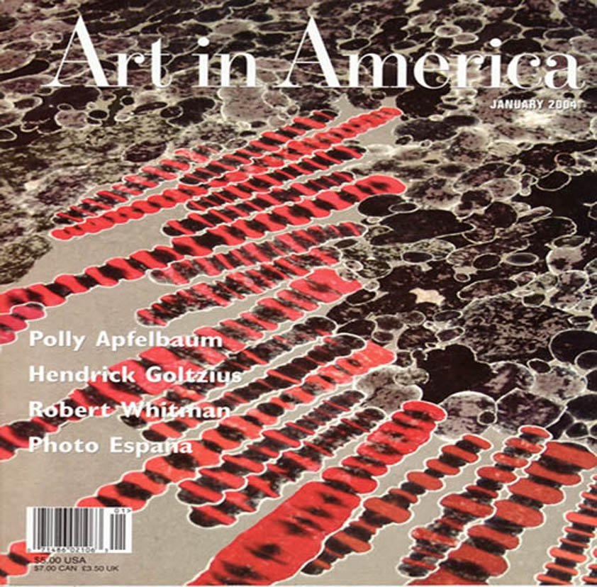 ART IN AMERICA Magazine Polly Apfelbaum Hendrick Goltzius Robert Whitman Back Issue January 2004