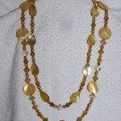 Amber Shells