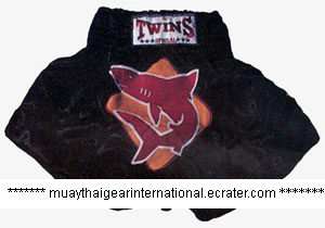 TS078 - Twins Special Muay Thai Shorts