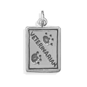 Sterling Silver Veterinarian Charm