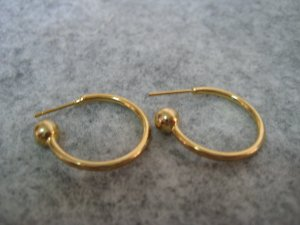 Ear Wire, 20mm, 1 pair