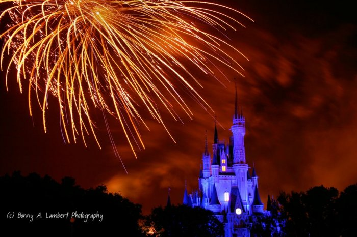 Disney Castle Fireworks - Digital Art Print 8 x 10