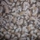 Timeless Treasures Brown Tonal Leaf Sepia Silhouettes Fabric Per Yard BTY