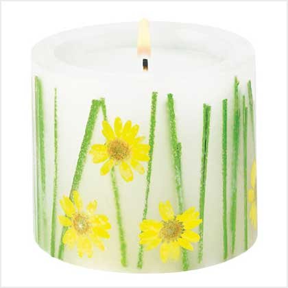 39210 Darling Daisies Candle