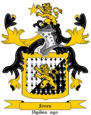 Jones Coat of Arms in Cross Stitch