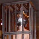 """eXtreme Steel Head Cage Medium (5"""")"""
