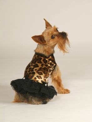 Leopard Print Tank Dress With Matching Hat/Collar XX Small Dog Dress
