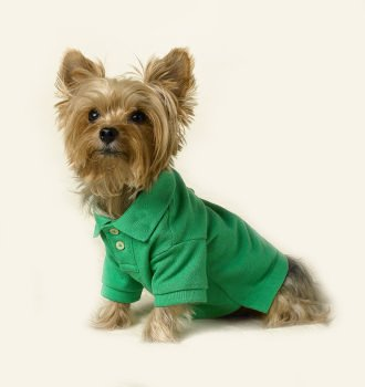 SALE Green Polo Sport Harness-T XSm Dog Shirt