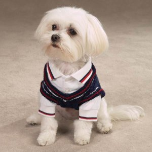 East Side Collection Cable Knit Twin Sets dog Shirt XSmall
