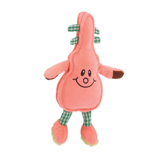 Zanies Acoustic Friends Dog Toy