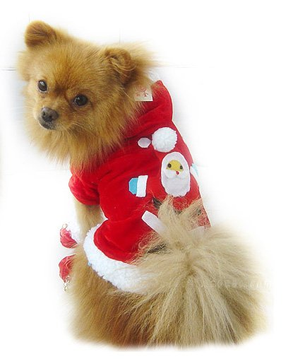 Sale Christmas Hoodie Sweater Dog Sweater Small