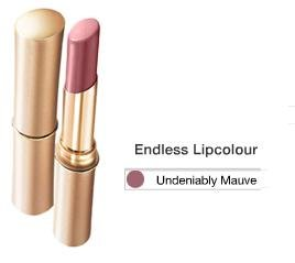 L'oreal Endless Lipstick Undeniably Mauve 500