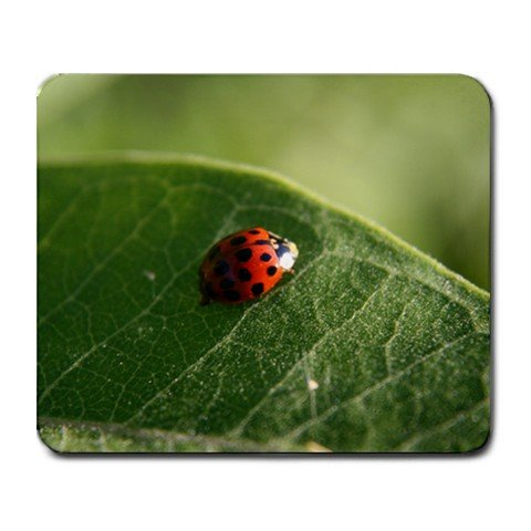 Mousepad ladybug on a leaf FREE SHIPPING