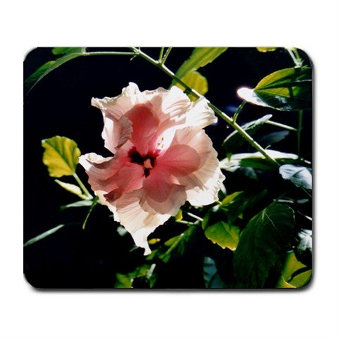 Mousepad pink hibiscus FREE SHIPPING