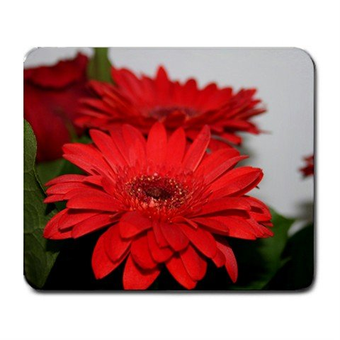 Mousepad FREE SHIPPING Very red flowers