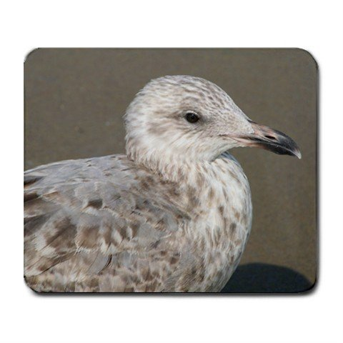 Mousepad FREE SHIPPING Seagull Ocean