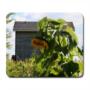 Mousepad FREE SHIPPING Giant sunflower and house