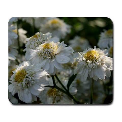 Mousepad FREE SHIPPING ruffly girly soft flowers