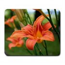 Mousepad FREE SHIPPING Tiger Lily Flowers