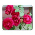 Mousepad FREE SHIPPING really nice dark pink roses