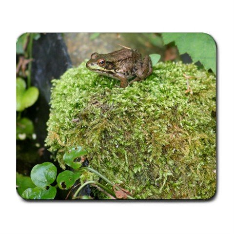 Mousepad FREE SHIPPING insanely cute frog sitting on a moss covered rock