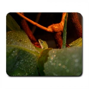 Mousepad FREE SHIPPING Zood the Anole by her banana leaf