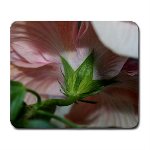 Mousepad FREE SHIPPING fairy view of a hibiscus flower