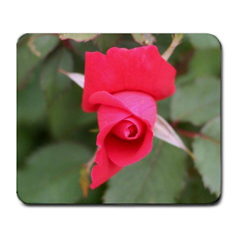 Mousepad FREE SHIPPING great rose bud