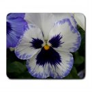 Mousepad FREE SHIPPING really nice pansy