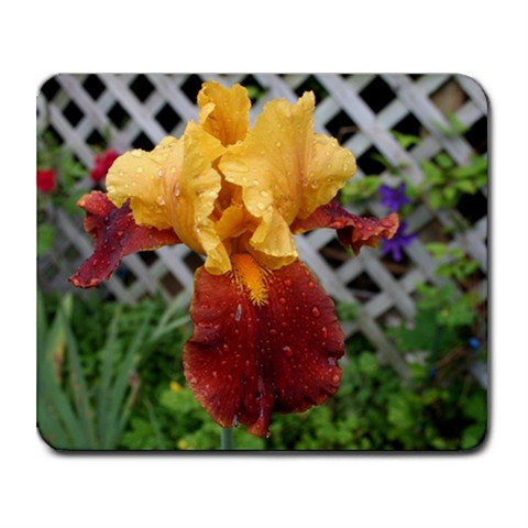 Mousepad FREE SHIPPING Red/Orange/Yellow Iris after rain