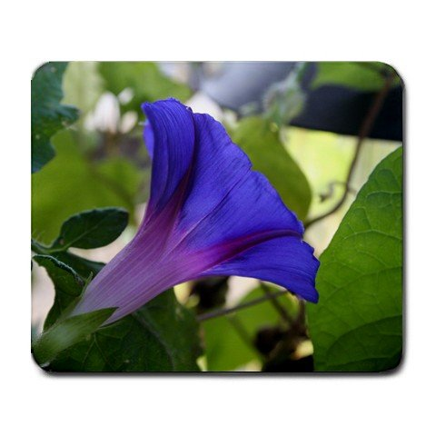 Morning Glory Mousepad  NEW   Free shipping