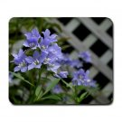 Blue Flowers Summer Mousepad  NEW   Free shipping