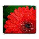 Bright Red Flower, green leaves, Mousepad  NEW   Free shipping