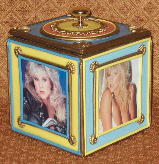 SAMANTHA FOX Custom-Designed Bookshelf CD Storage Box
